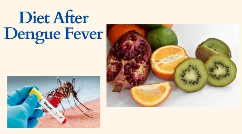 Diet After Dengue Fever